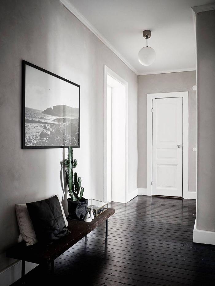 une peinture taupe clair sur les murs du couloir qui s'harmonise avec la déco sobre et élégante, qui contraste avec le plancher foncé