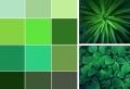 80 idées comment inviter les nuances de vert dans la déco