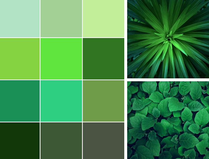 idée peinture vert de gris, quelle couleur associer au vert anis, comment intégrer les nuances de vert dans la déco