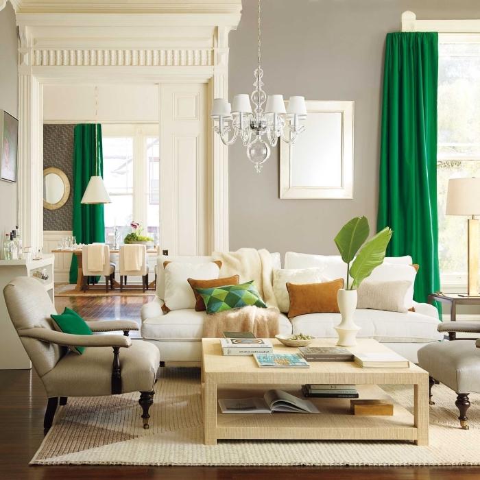 exemple de salon cozy au plancher de bois foncé, déco salon aux murs gris clair avec objets de nuances de vert