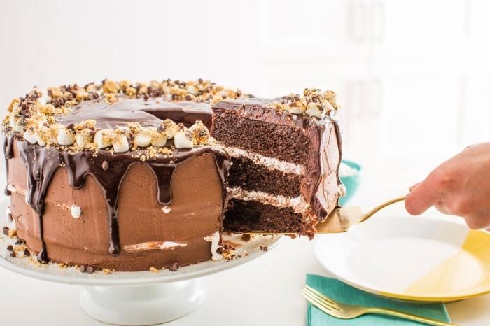 délicieux gateau nutella s'mores à la guimauve et au chocolat, au glaçage coulant de chocolat décoré de guimauves