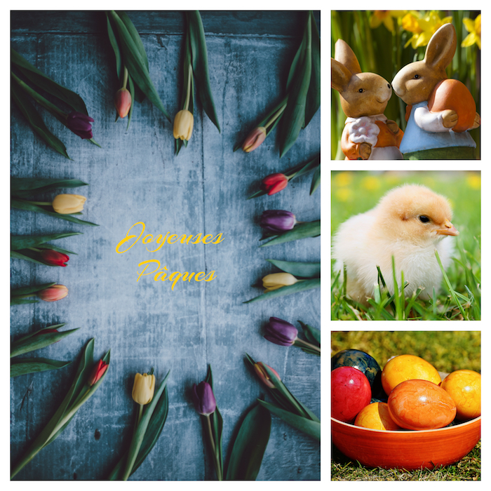 Joyeuses Pâques entre tulipes, poussin jaune dans la gerbe, oeufs colorés, deux lapins amoureux, image de printemps