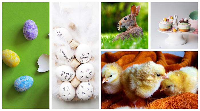 Images de printemps, photo bon week end de paques, jolie image de pâques avec les symboles centrales de cette fete