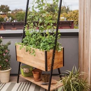 Astuces pour créer un jardin ou potager vertical