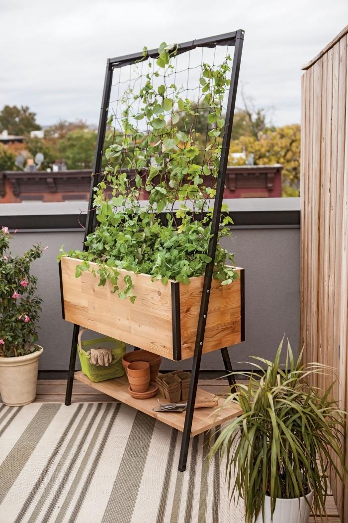 aménager un petit potager sur balcon dans un bac à planter en bois avec un treillis en métal noir et petite étagère pour les outils de jardinage