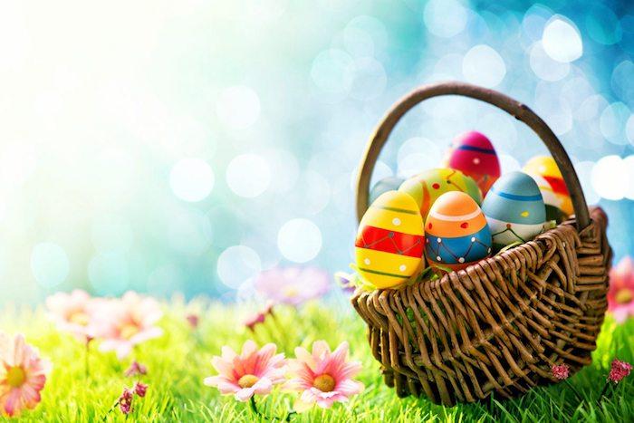 Basket avec des oeufs colorés pour Pâques, pelouse verte fleurie champ de printemps, belle image pour dire joyeuses fetes de paques, carte joyeuses pâques