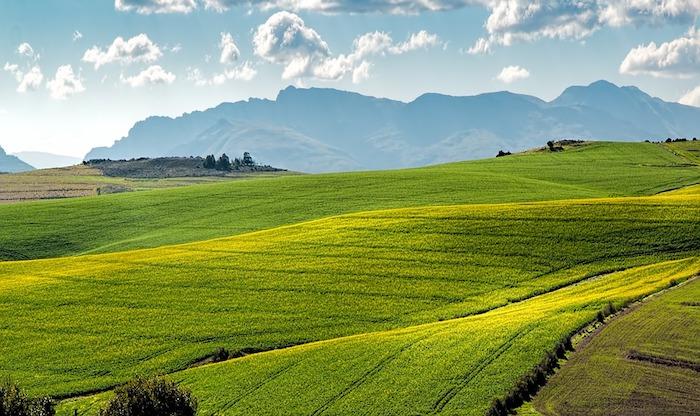 Vert champs en printemps avec un montagne en arriere plan, fond ecran printemps, belle image arriere plan