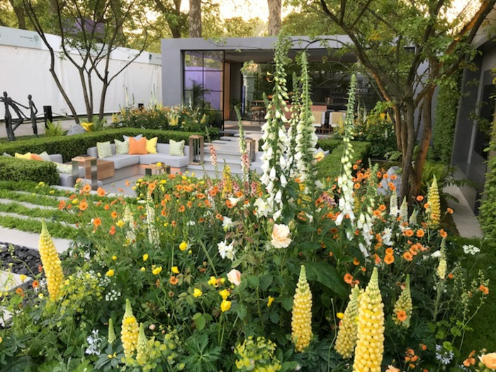 maison moderne avec grand jardin, mobilier de jardin moderne, massif jardin avec fleurs haute taille