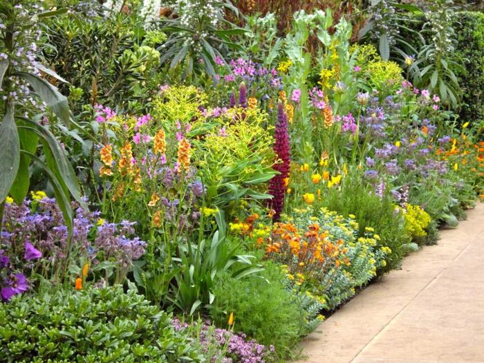 bordure fleurie devant maison, plusieurs espèces de fleurs mêlées, allée de jardin, parterre de fleurs