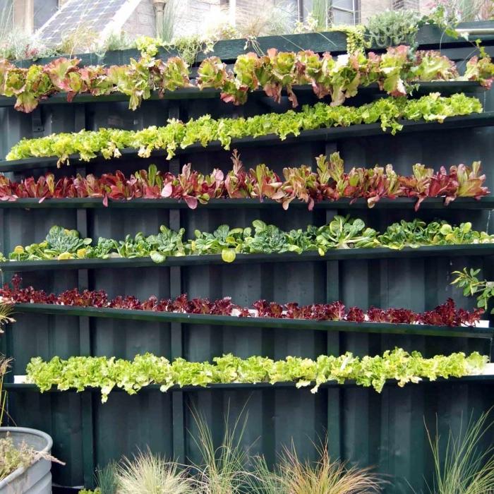 potager vertical mural réalisé à partir des gouttières recyclées, faire pousser des plants salades dans des gouttières