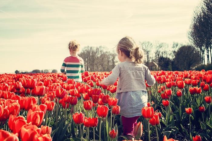 Deux filles qui courent dans un champ fleuri, paysage champetre fond d'écran, tulips fond ecran paysage original, idée fond d'écran jovial