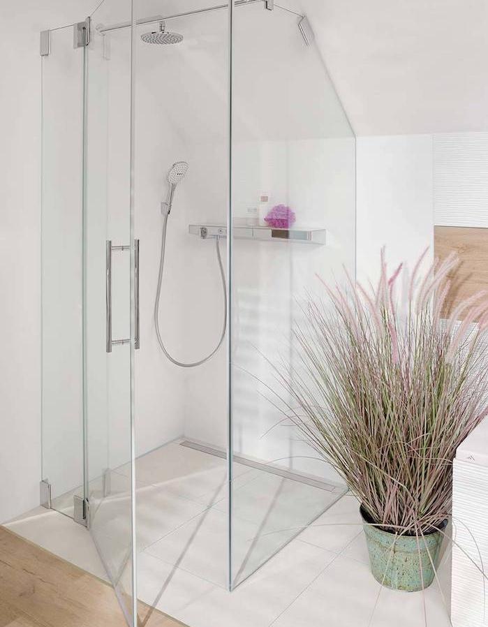 salle de bain blanche avec douche vitrée et plante salle de bain, idée comment aménager une douche sous pente