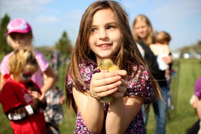 Fille qui chasse aux oeufs et a trouvé un petit poussin jaune trop mignon, image de paques gratuit, belles images de paques
