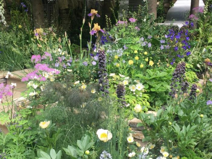 fleurs de printemps et d'été, fleurs vivaces à floraison pastel, allée de jardin, parterres de fleurs