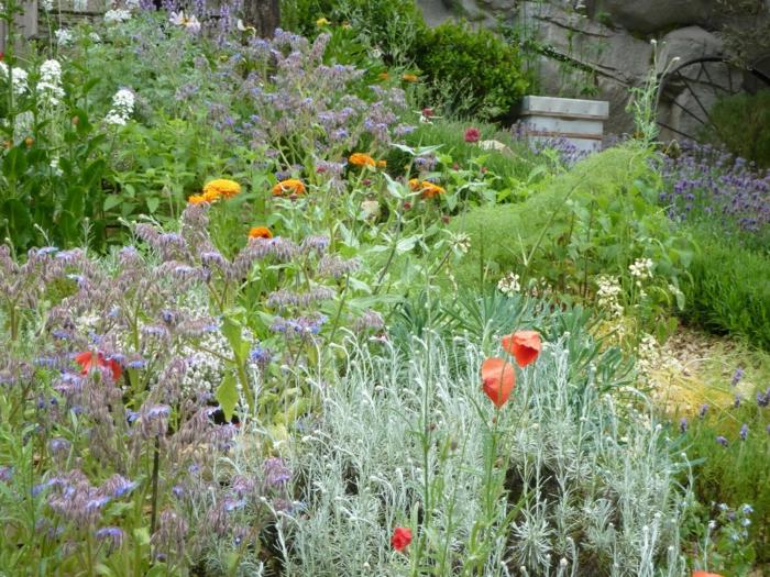 créer un massif sans entretien de vivaces résistantes, jardin sous pente, massif de fleurs