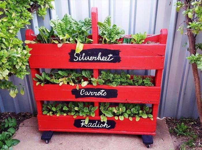 une palette jardiniere verticale repeinte en rouge sur roulettes, faire pousser des salades et des légumes à la verticale