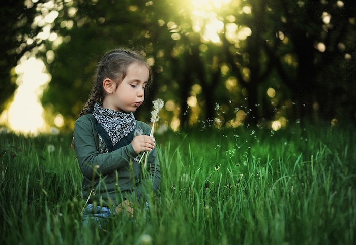 Petit fille et pissenlit, champ vert, arbres ensoleillés, fond ecran printemps, paysage japonais fond d'écran
