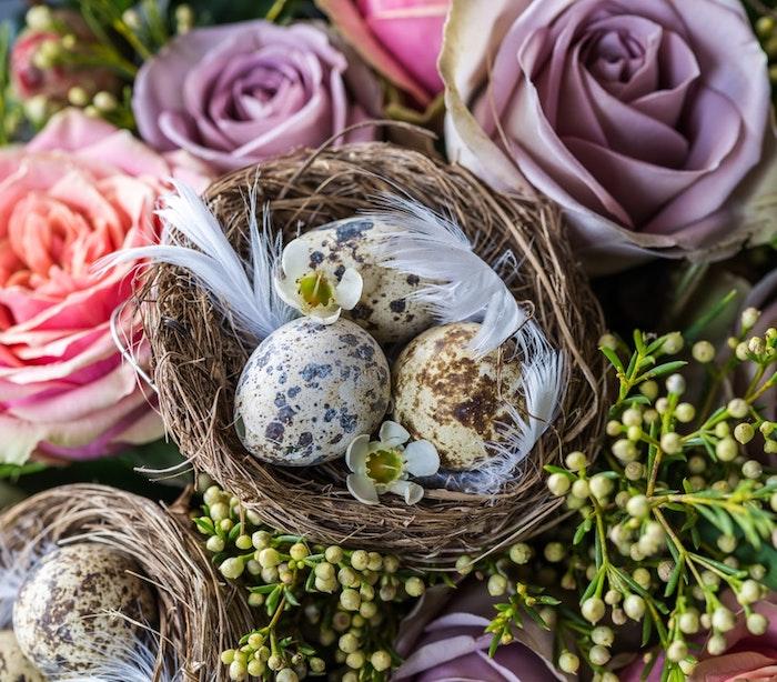 Bouquet de roses et petits baskets d'oeufs décorés pour les paques, dessin oeuf de paques, joyeuses paques, images couleurs pastel