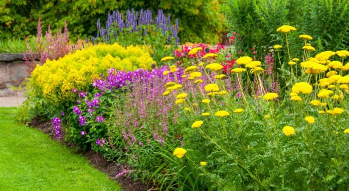 comment avoir un joli parterre toute l'année, massif fleurs en couleurs éclatantes, herbe verte