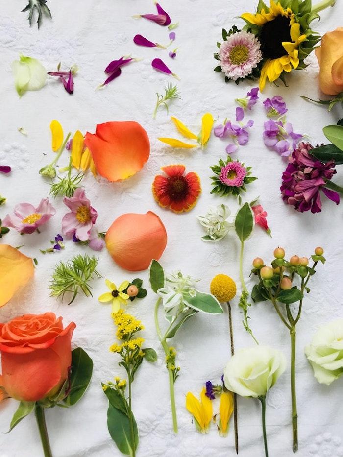 Les fleurs de printemps avec les quelles on peut décorer des oeufs, carte joyeuses pâques, image de pâques, carte de voeux avec photo