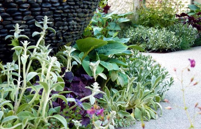 massif de fleurs forme ronde, parterres autour de grands pots de fleurs, parterre devant maison