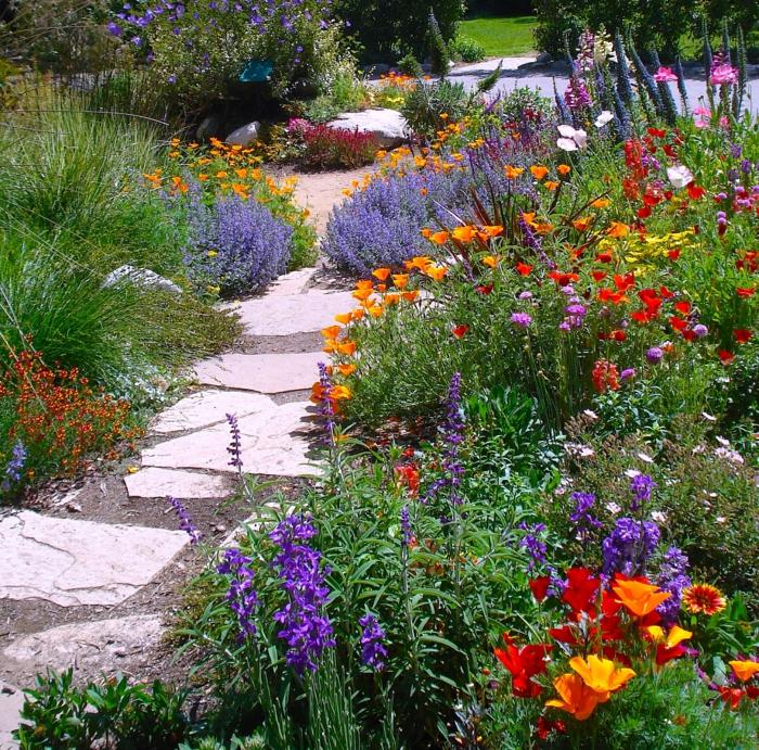 massif fleuri, allée ensoleillée, fleurs printanières à floraison éclatante, allée en dalles blanches