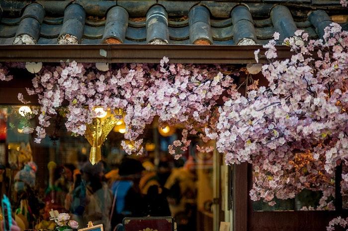 Décoration de vitrine de magasine avec fleurs d'arbre fruitier, fond ecran paysage, fond ecran nature, image de printemps,