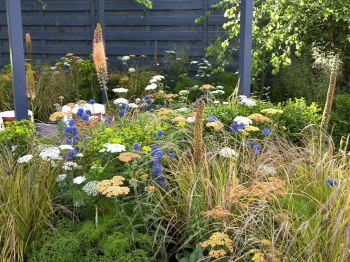 fleurs sauvages dans le jardin, massif jardin facile d'entretien avec fleurs sèches floraison été automne