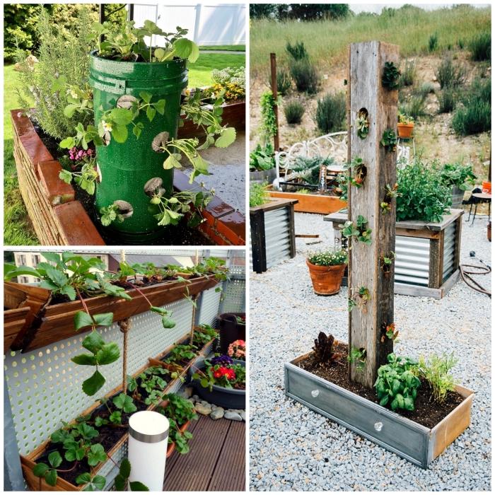 des fraisiers cultivés à la verticale dans des contenants réalisés à partir des matériaux recyclées, un tour à fraisier en bois ou en métal recyclé