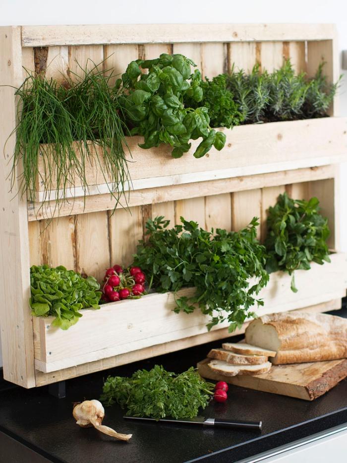 une palette en bois détournée en mini-jardin d'herbes aromatiques posé au mur de la cuisine pour avoir ses condiments préférés à la portée de main
