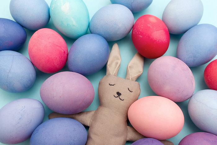 Violet, rose et bleu oeufs colorés paques tradition, le lapin qui les garde, belles images de paques, carte joyeuses pâques nature renaissance