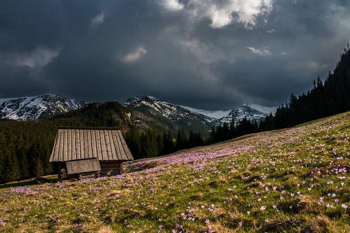 Chalet dans la montagne qui se reveille peu a peu de son sommeil hiverne, fond ecran nature, paysage fantastique fond d'ecran sombre