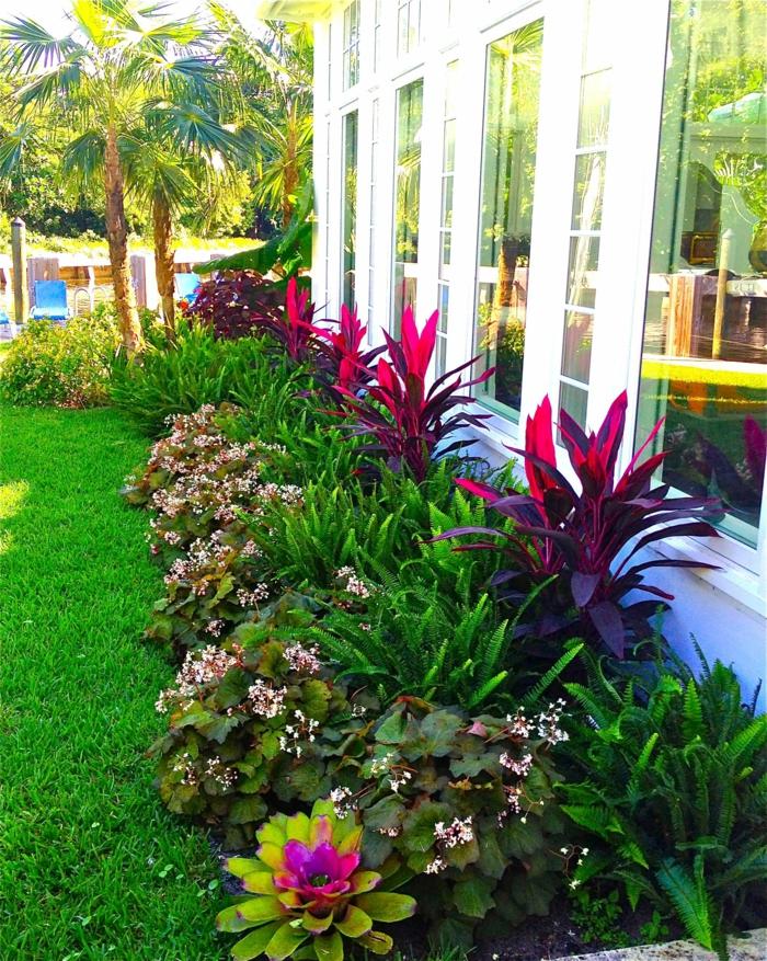 massif fleuri devant une maison plain pied, pelouse verte, palmiers, modele de parterre de fleurs