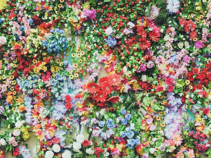 Image fleurs dans bassin avec eau, paysage feurie, fond d'écran plein de fleurs, fond ecran nature, belle photographie