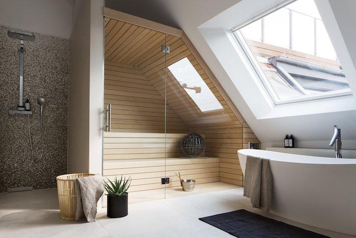 salle de bain douche et baignoire avec une salle de spa, fenetre de toit, sol au carrelage beige clair, plante salle de bain succulente