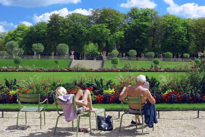 Beau paysage, profiter des rayons de soleil en printemps dans les jardins parisiens, fond d'ecran image printemps floraison