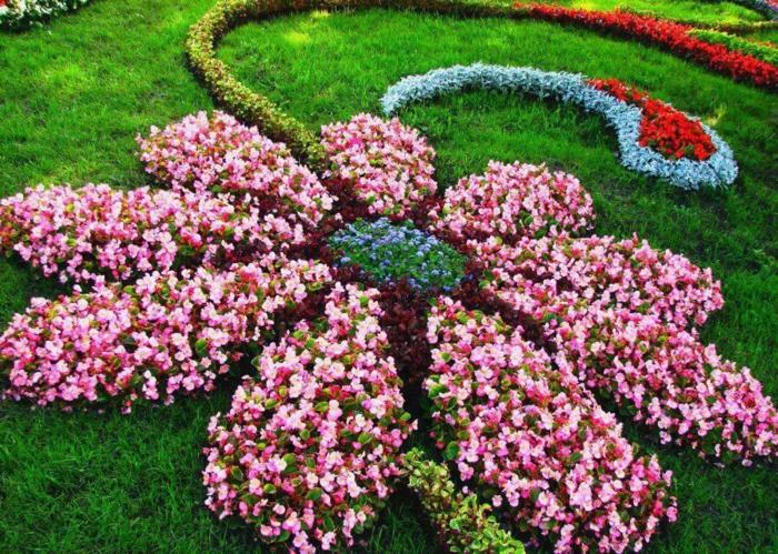 grande figure de fleur rose créé avec massif fleurs roses et tiges avec haie verte, pelouse verte