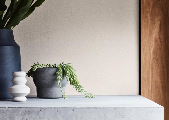 idée peinture design pierre, modèle enduit à texture pierre, exemple quelle peinture pour un salon moderne avec cheminée béton