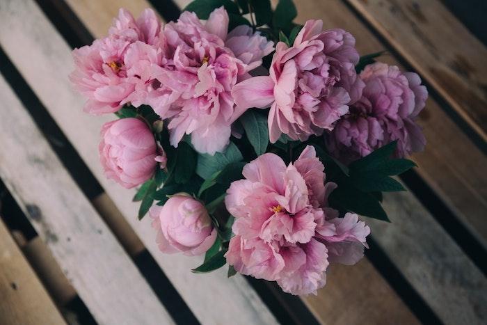 Pivoines fleurs de printemps magnifiques, bouquet de pivoines roses sur bois sol, fond d'écran gratuit printemps, fond ecran fleur, photo paysage printanier