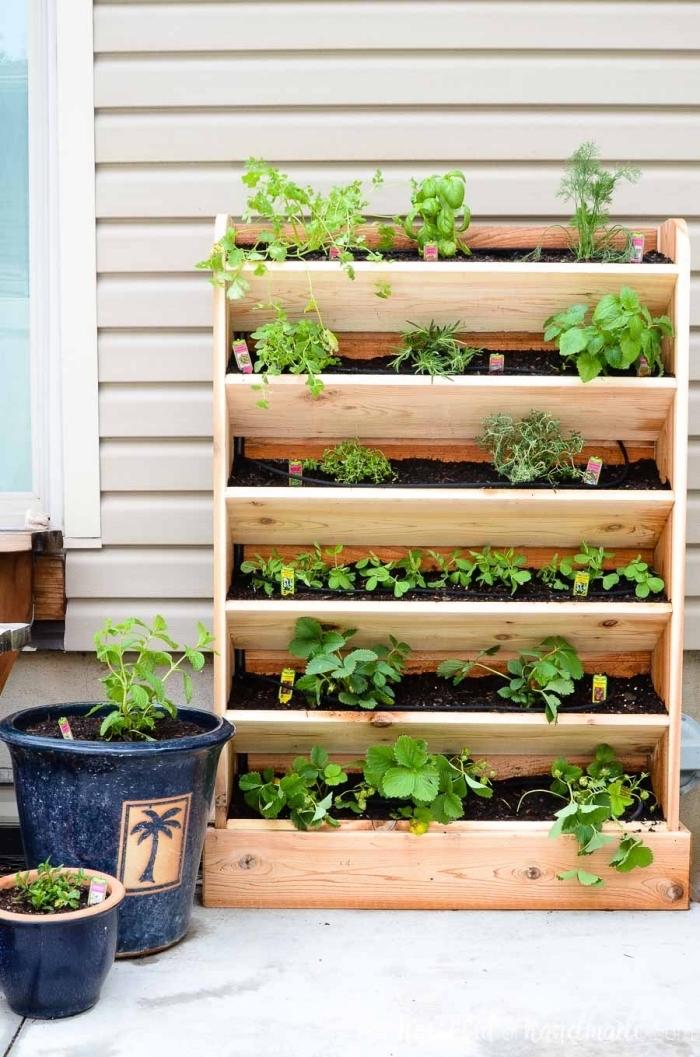 idée pour réaliser un jardin en hauteur à plusieurs niveaux avec son propre système d'arrosage goutte à goutte