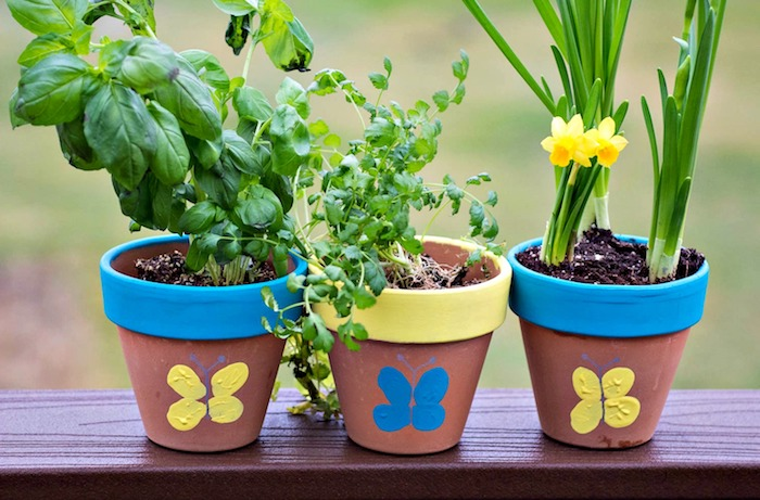 exemple de pot de fleur diy personnalisé à empreintes de doigt de peinture jaune et peinture bleue avec des plantes à l intérieur