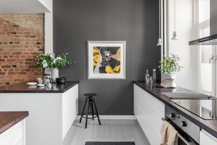 aménagement petite cuisine moderne avec mur gris foncé, déco de cuisine grise et blanche avec plan de travail en bois foncé