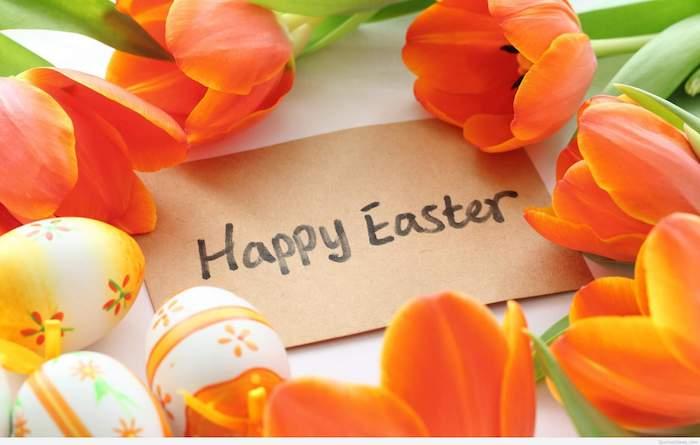 Tulipes oranges, une carte joyeuses paques et des oeufs décorés, belles images de paques, carte joyeuses pâques nature renaissance