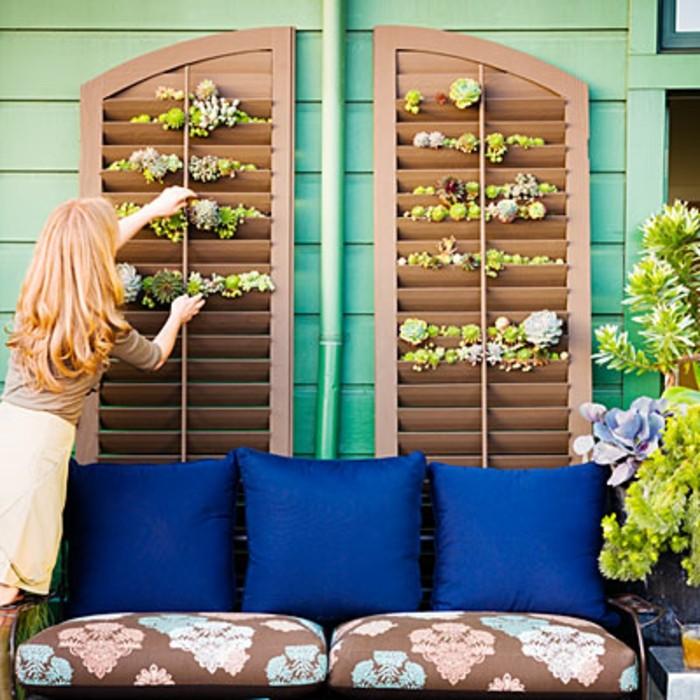 volets marrons à plantes grasses décoratives, canapé à coussins marron à motifs et coussins décoratifs bleu nuit