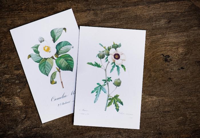 Joli dessin facile a faire etape par etape, chouette idée pour dessin carte de voeux de fleur champetre avec son nom