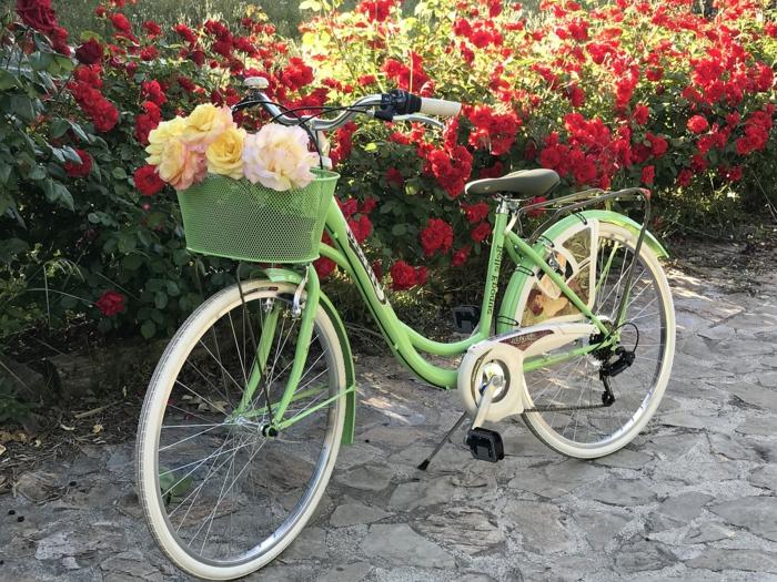 vélo vert, panier comme bac de fleurs avec roses plantées, haie de roses fleuries