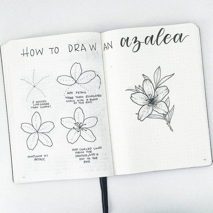Cahier d'esquisses coloriage fleur azalea simplifié dessin, s'inspirer pour réaliser le plus beau dessin