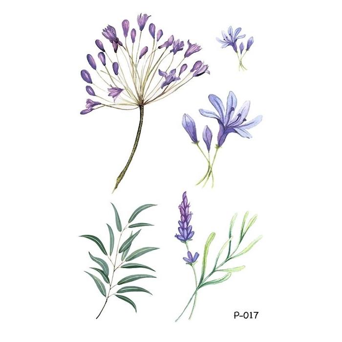 Violet fleurs sauvages, le plus beau dessin du monde dessin etape par etape