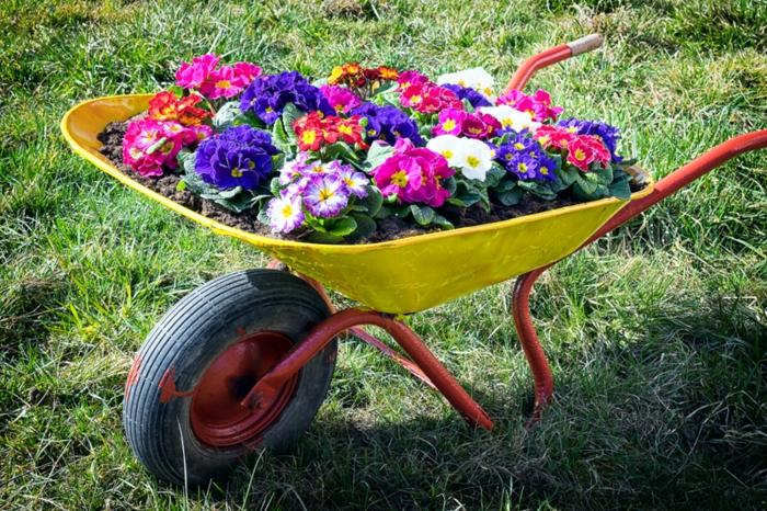 brouette jaune remplie de terreau et avec fleurs plantées, comment aménager son jardin