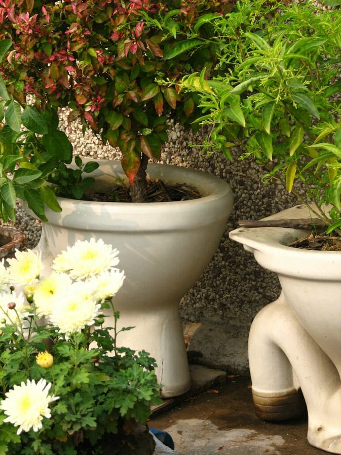 idee deco jardin avec cuvette, cuvettes transformées en bacs, arbrisseaux plantés dans les cuvettes